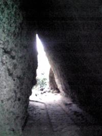 Image515